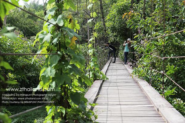 น้ำตกเก้าโจน (น้ำตกเก้าชั้น) สวนผึ้ง ราชบุรี