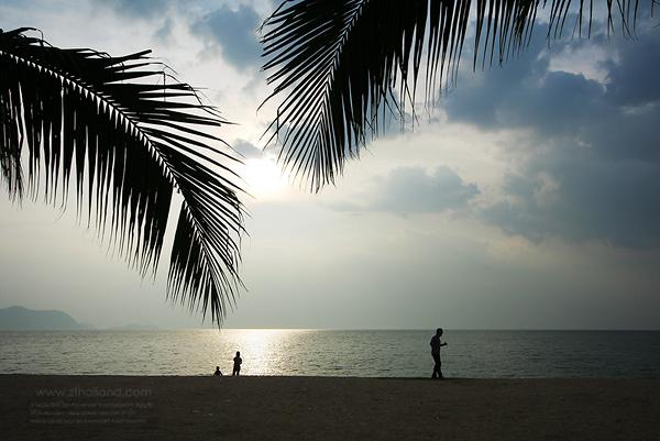 หาดบ้านอำเภอ สัตหีบ ชลบุรี