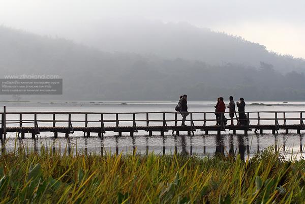 ทะเลสาบเชียงแสน (เขตห้ามล่าสัตว์ป่าหนองบงคาย) เชียงราย