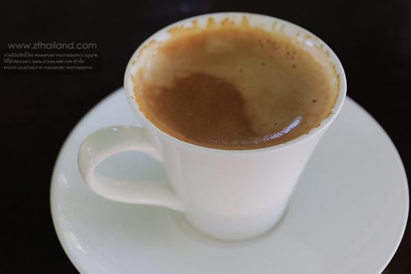 ฟาร์มกาแฟขี้ชะมด (ฟาร์มชะมดหลังสวน) ชุมพร