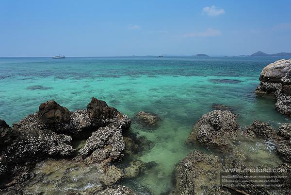 เกาะขาม (อุทยานใต้ทะเลเกาะขาม) สัตหีบ ชลบุรี