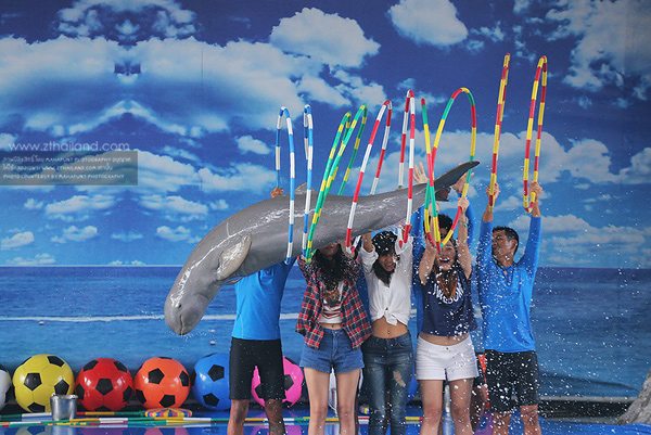 Pattaya Dolphin World (โลมาโชว์) สัตหีบ ชลบุรี
