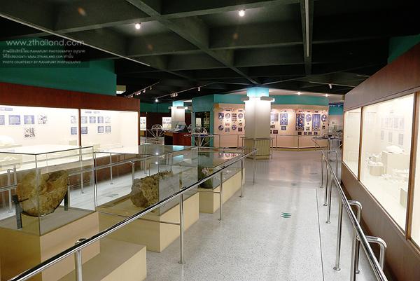 พิพิธภัณฑ์เปลือกหอย (Phuket Seashell & Museum) ภูเก็ต