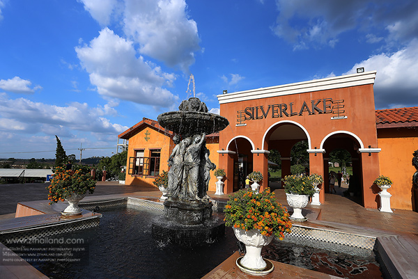 ไร่องุ่นซิลเวอร์เลค (Silver Lake) สัตหีบ ชลบุรี