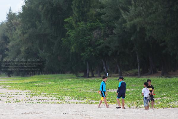 สวนสนประดิพัทธ์ ปราณบุรี ประจวบฯ