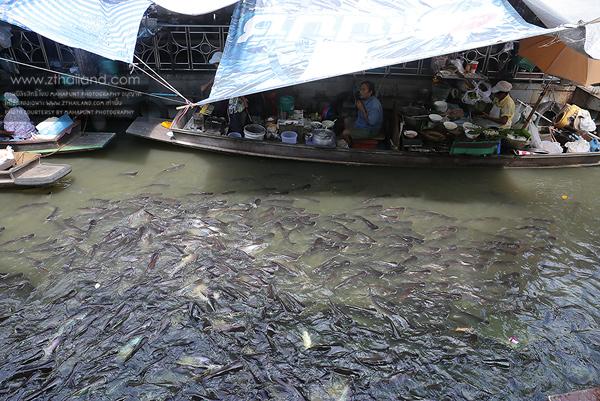 ตลาดน้ำตลิ่งชัน กรุงเทพฯ
